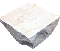 Fossil Mint Setts 100×100